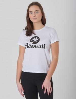 Stanley Hawaii