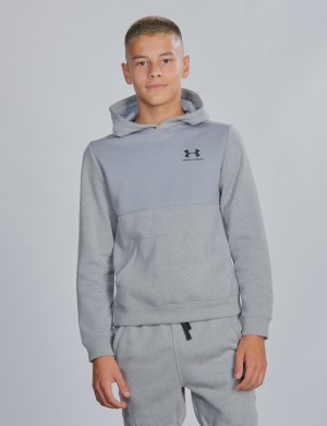 UA Cotton Fleece Hoodie