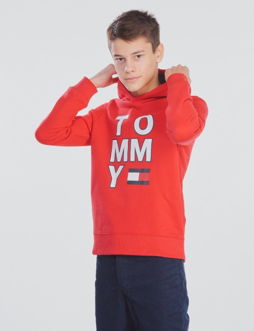 Tommy Hilfiger - MULTI AW GRAPHIC HOODIE