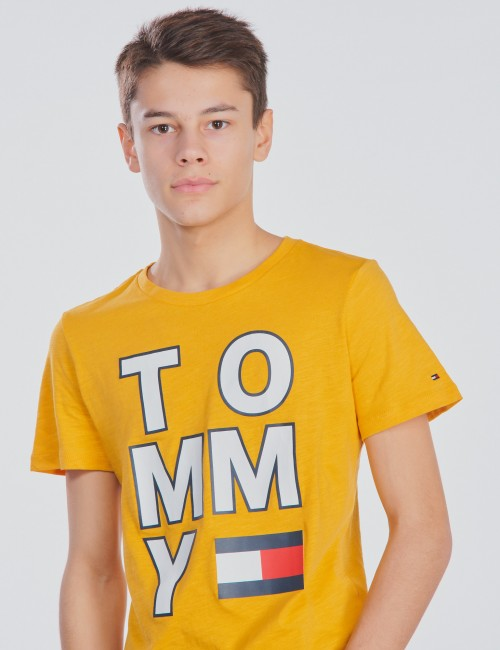 Tommy Hilfiger - MULTI APPLICATION AW TEE